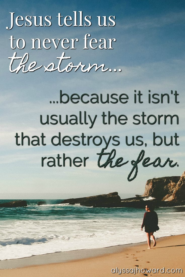 Jesus tells us to never fear the storm... because it isn't usually the storm that destroys us, but rather the fear.