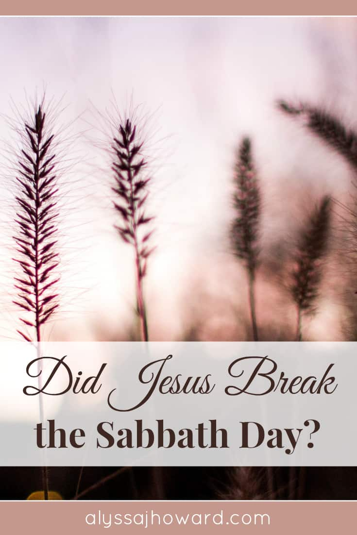 Did Jesus Break the Sabbath Day? | alyssajhoward.com