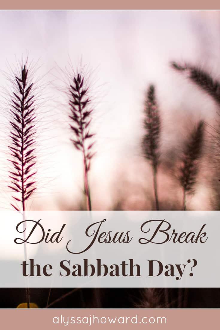 Did Jesus Break the Sabbath Day? | alyssajhoward.com