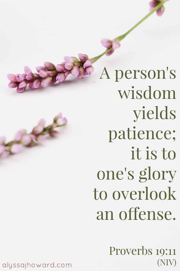 A person's wisdom yields patience; it is to one's glory to overlook an offense. - Proverbs 19:11