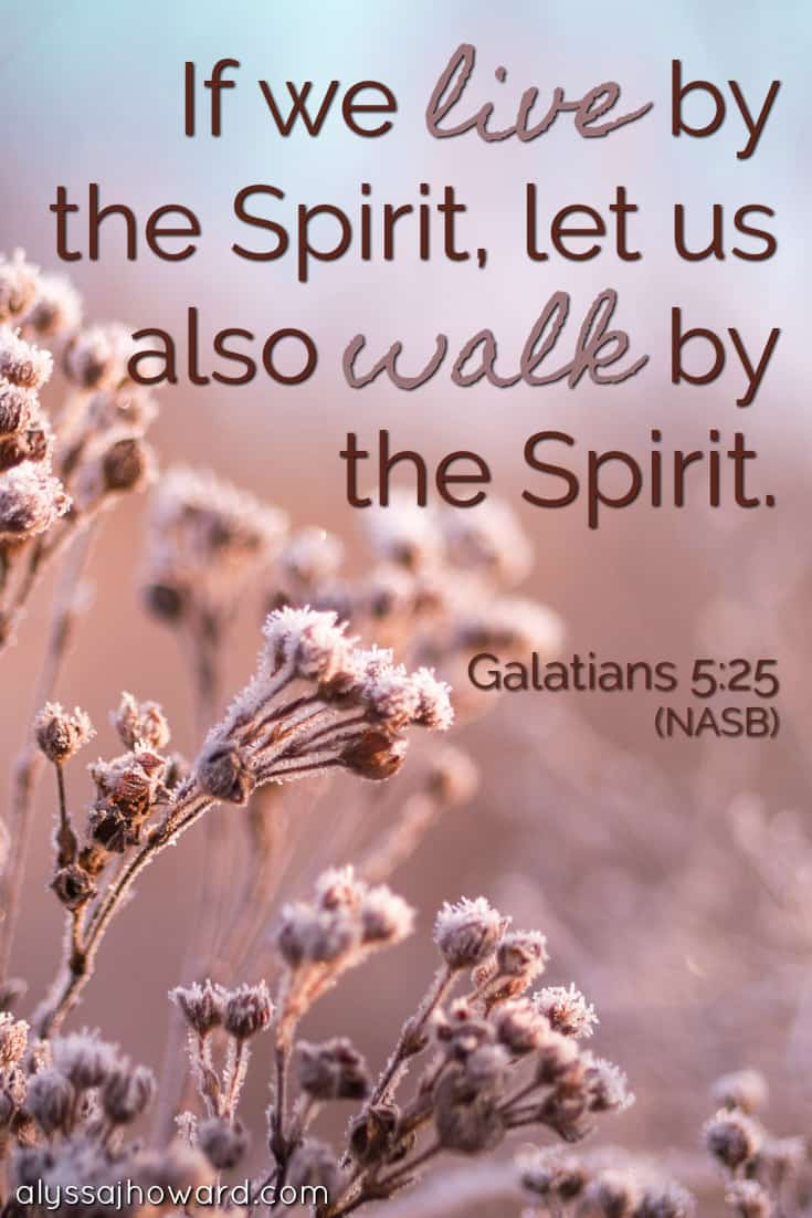 Are You Walking by the Spirit in Your Daily Life? | alyssajhoward.com