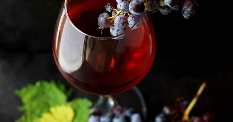 Wine or Grape Juice? What Does History Teach Us About Wine in the Bible? | alyssajhoward.com