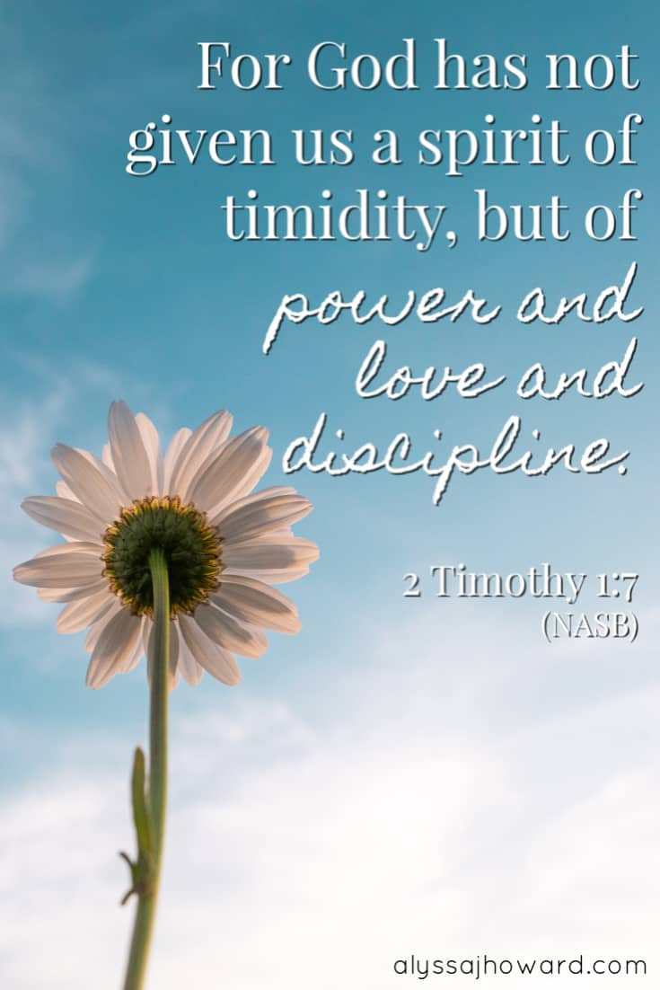 For God has not given us a spirit of timidity, but of power and love and discipline. – 2 Timothy 1:7