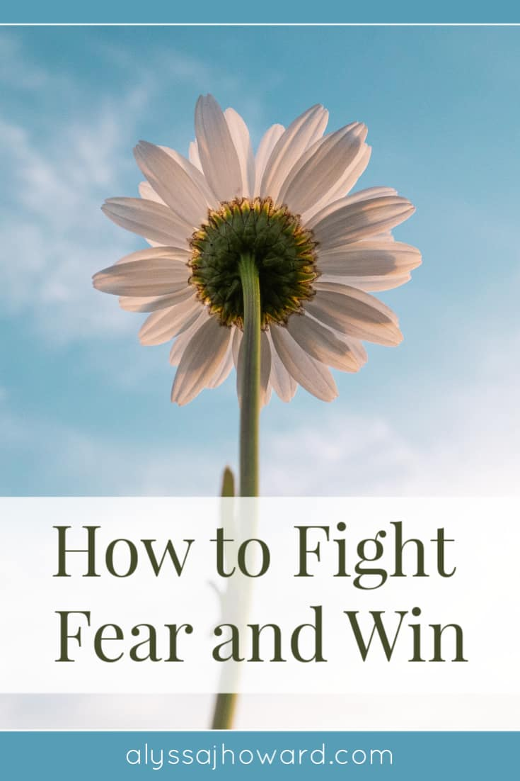 How to Fight Fear and Win   alyssajhoward.com