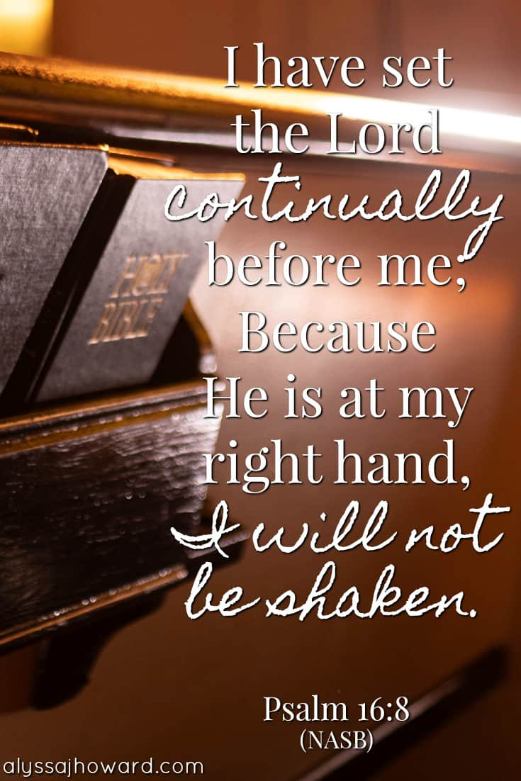 I have set the Lord continually before me. Because He is at my right hand, I will not be shaken. - Psalm 16:8