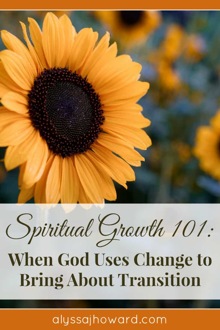 Spiritual Growth 101: When God Uses Change to Bring About Transition | alyssajhoward.com
