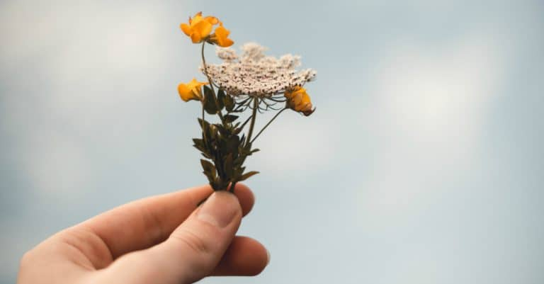 Forgiving When It Feels Impossible to Forgive | alyssajhoward.com